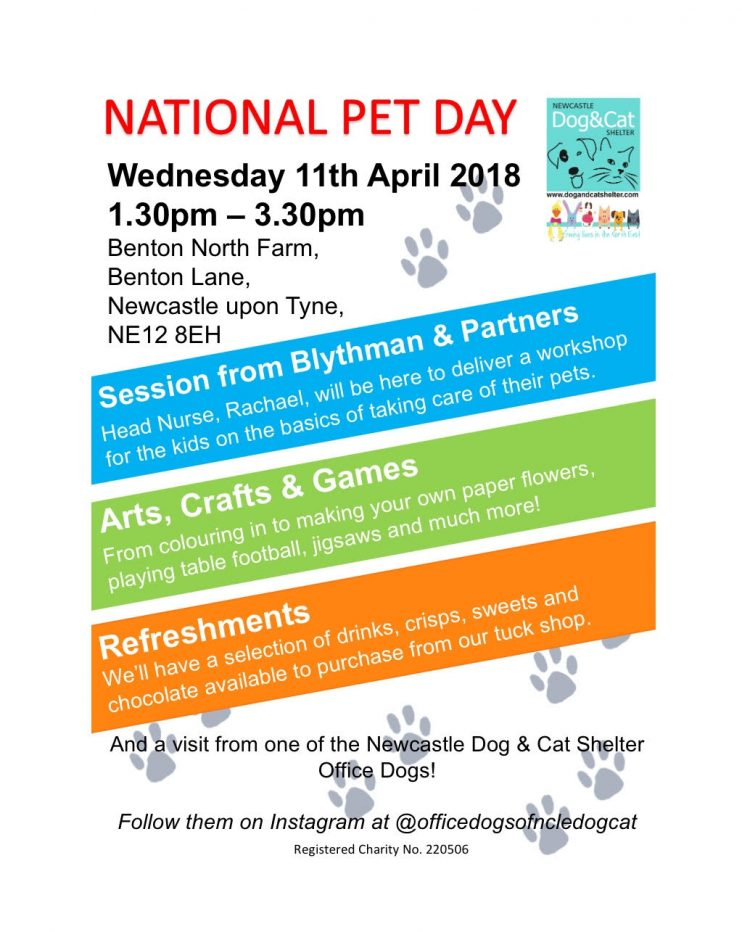 National Pet Day at The Newcastle Dog and Cat Shelter